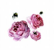 Aoife Tolerton 'Peonies & Bees'